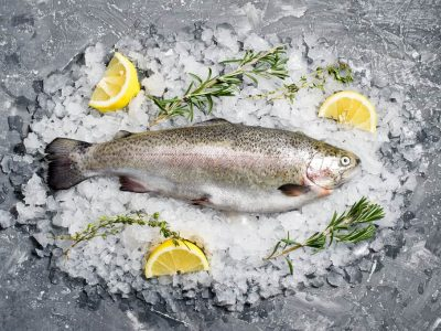 stocked trout live
